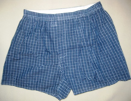 P90X Ripped Boxers
