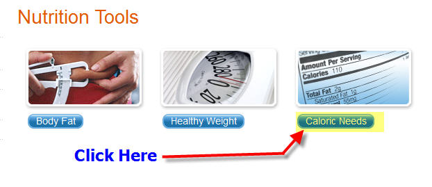 Caloric Needs Calculator