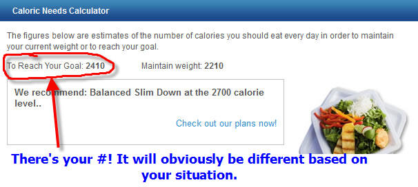 How Many Calories A Day